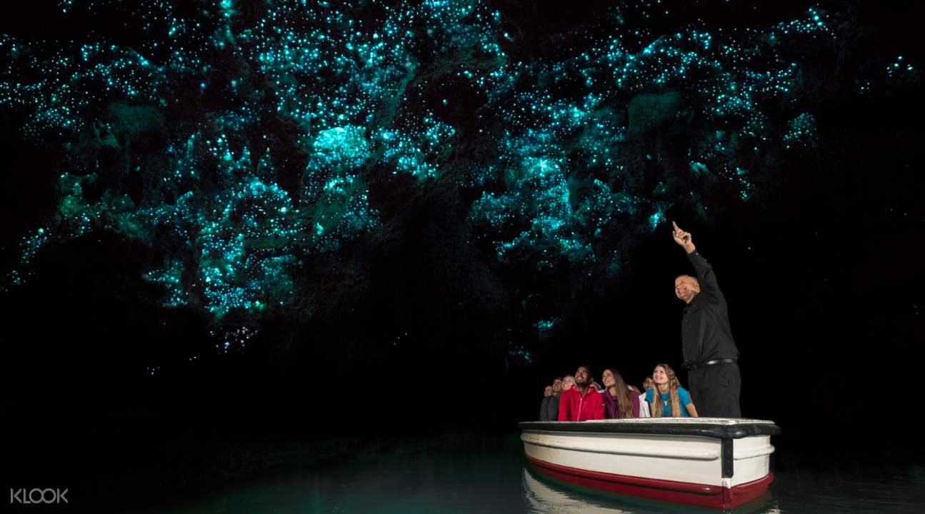 Boat Ride in Waitomo Glowworm Caves